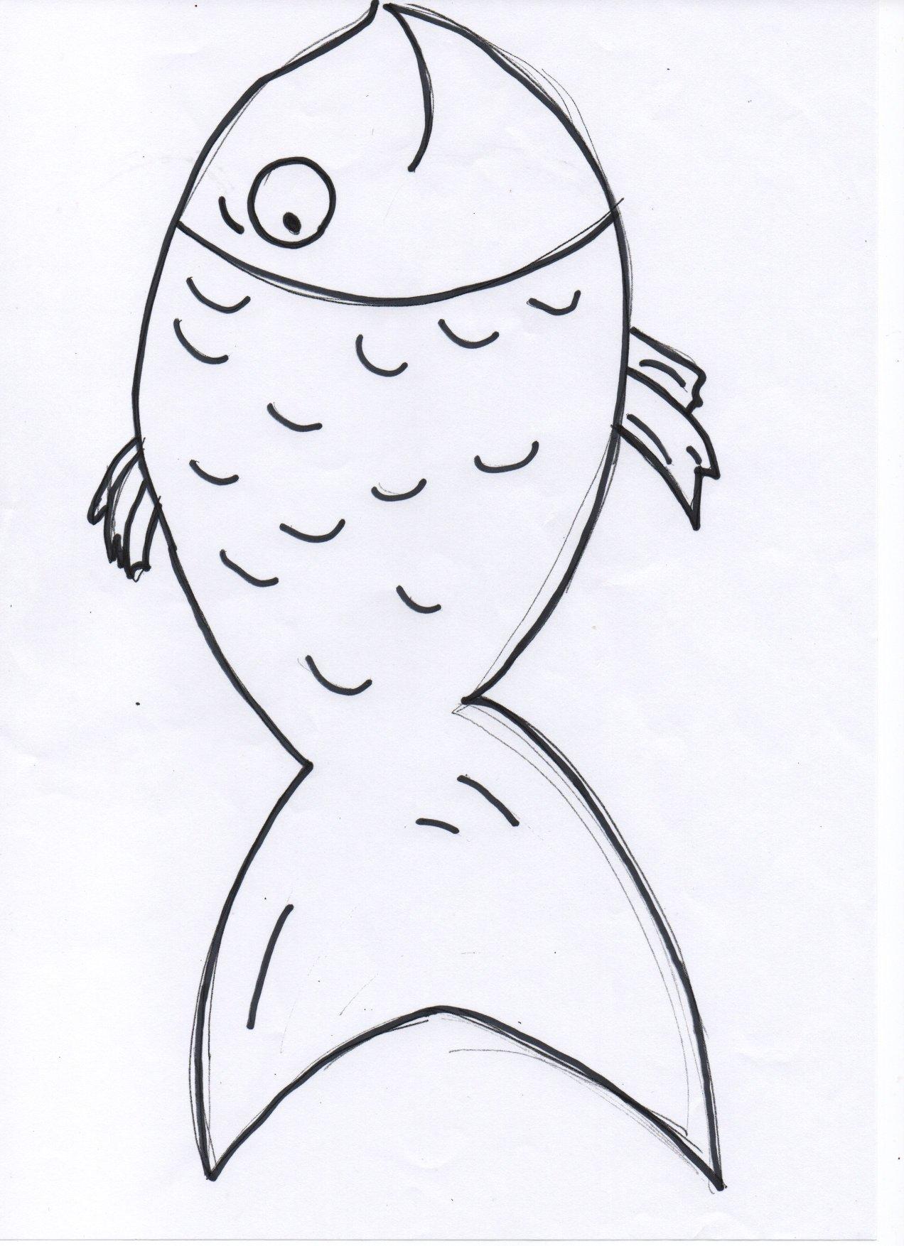 Underwater animals English worksheets, exercises | MissTesl