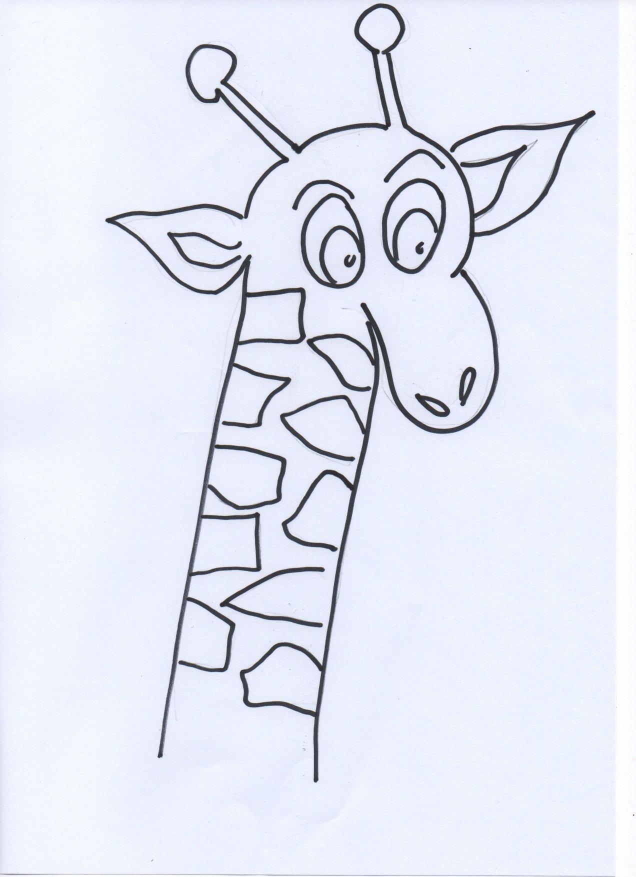 zoo animals colouring preschool kindergarten. Black Bedroom Furniture Sets. Home Design Ideas